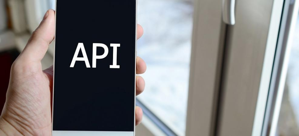 Man holding a phone that says API on screen